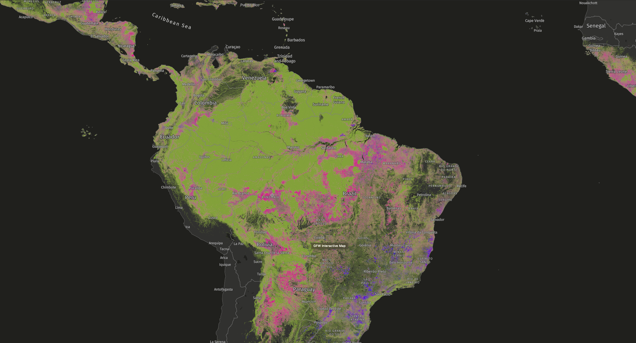 Global Forest Watch - South America