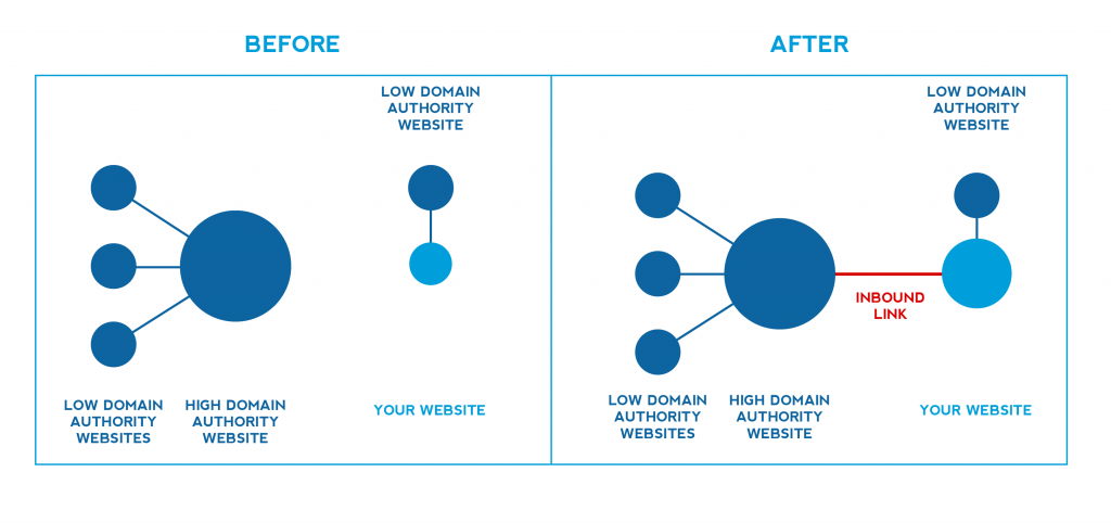 Link building improves domain authority graphice